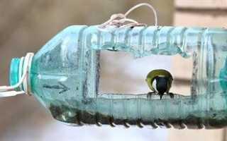 Кормушки из 5-литровых пластиковых бутылок